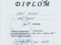 Diplom-Myjava1